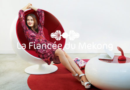 lafianceemekong-logo2