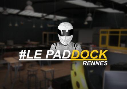 miniature-paddock2