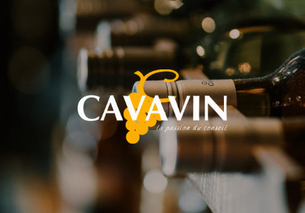 00-cavavin-miniature