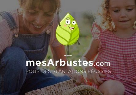 00-mesarbustes-miniature